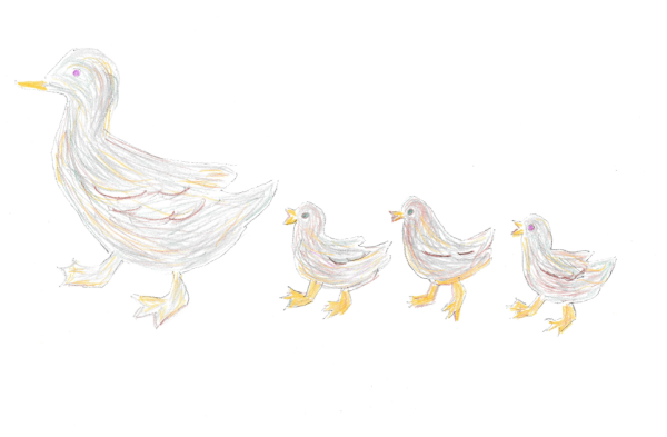 illustration of mother duck and her ducklings